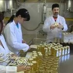 api e laboratorio miele