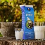 latte-nobile bicchiere e bottiglia