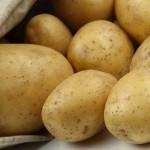 patate. campane buccia gialla