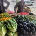 pietro parisi e ortaggi